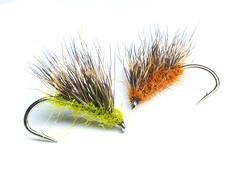 Hedgehogs (stephen_price) Tags: nikon 40mm d7000 hedgehogs flyfishing white green ginger