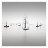 Floating Woods (Vesa Pihanurmi) Tags: bobbingforest floatingwoods woods forest seascape lagoon foggy mist rijnhaven rotterdam netherlands minimalism dobberendbos nature