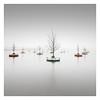 Floating Woods (Vesa Pihanurmi) Tags: bobbingforest floatingwoods woods forest seascape lagoon foggy mist rijnhaven rotterdam netherlands minimalism dobberendbos nature