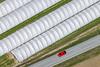 Red Car - 132 (Aerial Photography) Tags: by dgf ndb 1ds40004 30032010 ackerbau diagonale feld fotoklausleidorfwwwleidorfde gewächshaus grafik landscapeandnature landschaft landschaftnatur landwirtschaft luftaufnahme luftbild pilsting weis aerial agriculture diagonal field graphicart graphics landscape landscapenature nature outdoor redcar redpoint roterpunkt rotesauto white pilstinglkrdingolfinglandau bayernbavaria deutschlandgermany deu