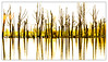 _S3A3317.04.18 (addy_graphy) Tags: biesbosch