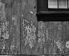 photo - Wall and Window, Mare Island Naval Shipyard (Jassy-50) Tags: photo mareisland vallejo california wall corrugated corrugatediron window windowsill topazadjust blackwhite mareislandnavalshipyard