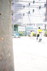 DSC07986 (SnowM28) Tags: kanagawa yamato