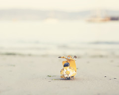 diario de primavera... (xelea) Tags: 7dwf beach playa blur toys