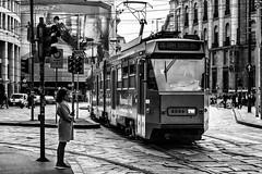 16 SAN SIRO M5 (iperfocale77) Tags: 6d canon canonef24105mmf4lisusm canoneos canoneos6d canonlseries eos francescotusino italy milano bn biancoenero blackwhite bw milan street streetphotography lombardia italia it pedestrian pavement tram urban monochrome