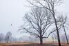 Jay House (JMS2) Tags: scenic fog landscape usa historymansion architecture preservation park rye