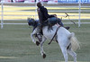 Bronc Riding (iansand) Tags: eastershow eastershow2018 rodeo bronc horse buck bucking