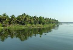 India (Karnataka)-Lakeside beauty (ustung) Tags: waterreflection reflection india karnataka water lake tree coconut palm forest landscape