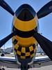 North American P-51D Mustang (fisherbray) Tags: fisherbray usa unitedstates florida okaloosacounty destin wingsoffreedom executiveairport dts kdts google pixel2 p51d p51 mustang northamerican alabamarammerjammer 4473990 nl51th