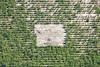 Clearing (Aerial Photography) Tags: by fs obb 1ds39742 30032010 baumpflanzung bäume fichten forstwirtschaft fotoklausleidorfwwwleidorfde grafik grün hintermeier hörgertshausen landscapeandnature landschaft landschaftnatur landwirtschaft linien luftaufnahme luftbild nadelbaum nadelwald plantage rechteck reihen schonung vgmauern aerial agriculture conifer forestplantationarea graphicart graphics green landscape landscapenature lines nature outdoor plantation rectangle rows spruce treenursery treeplantation trees verde hörgertshausenlkrfreising bayern deutschland deu