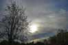 Wednesday Morning Sky. (dccradio) Tags: lumberton nc northcarolina robesoncounty outdoors outside nature natural landscape tree trees silhouette cloud clouds stormy stormclouds ominous sun sunshine hazy hazysunshine sunlight round circle light morning wednesday goodmorning sky angrysky cloudmixture cloudy overcast partlysunny nikon d40 dslr photooftheday photo365 project365 treebranch treebranches branch branches treelimb treelimbs