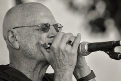 Ed Huey, Blues Musician (David Miller, photographer) Tags: musician singer vocalist musicperformance shreveport theblues harmonica guitar