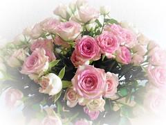 Rosenstrauß (Hannelore_B) Tags: blumen flowers rosen roses blumenstraus flowerbouqet
