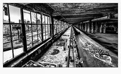 Poisson d'Avril. (francis_bellin) Tags: mars urbex haut rouille monochrome blackandwhite industriel 2018 port noiretblanc montréal danger froid poisson fricheindustrielle