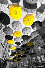 Vieux-Québec 2018-14 (Tasmanian58) Tags: bw yellow désaturation umbrella quebec batis18 zeiss sony a7ii
