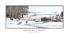 Oberon Common in winter snow (sugarbellaleah) Tags: park pergola trees snow snowing landscape panorama highlands weather winter climate oberon oberoncommon snowflakes path walk lake season highcountry countryside parklands outdoors nature environment pretty beautiful travel tourism pathway bridge recreation centraltablelands rural
