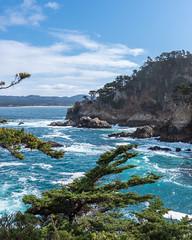 Cypress Cove (Matt McLean) Tags: california carmel coast landscape monterey ocean pacific pointlobos shore