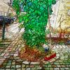 the broom (j.p.yef) Tags: peterfey jpyef yef broom besen baum tree digitalart photomanipulation square germany hamburg iphone