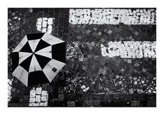 Jour de pluie ! (bertranddorel) Tags: pluie rain parapluie umbrella pavés rue street passagepiétons noir blanc noiretblanc forme graphisme bnw bw bn nb blackandwhite blancoynegro biancoenero mono monochrome ville town city saintmalo intramuros france bretagne europe nikon nikkor 50mm géométrie ciutad nero negro contraste pâques
