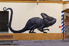 Cameleon (OliveTruxi (1 Million views Thks!)) Tags: arturbain malaga maus roa streetart urbanart spain