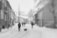 Snowy day in town (Helena Normark) Tags: snow winter snowing itssnowing pictorialism glow glowing trondheim sørtrøndelag norway norge sonyalpha7ii a7ii 50mm lensbaby creativebokeh creativebokehoptic lensbabylove seeinanewway