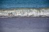 20180408 MARKGRAFENHEIDE (52).jpg (Marco Förster) Tags: dobermann hunde natur markgrafenheide ostsee strand frühling