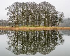 Esthwaite Water Reflections (Creative Capture Images) Tags: landscape reflection esthwaitewater lakedistrict nearsawrey england unitedkingdom gb ngc