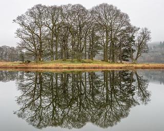 Esthwaite Water Reflections