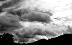 mpix 75 111617 EOS 3 50mm Ilford XP2 Super 400 120417 021e ~ Clouds (BDC Photography) Tags: pipecreek texas usa 081 canon canoneos3 canonef50mmf14usmlens bwfpro58mm010uvhaze1xmrcfilter ilford ilfordxp2super400 35mmbwfilm clouds bwfp cloudsstormssunsetssunrises citrit