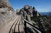 Montserrat (Frïsettes) Tags: barcelone barcelona espagne spain catalogne catalunya montain muntanya nature wildlife montserrat randonnée hiking