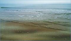 La mer du Nord, De Banjaard, Kamperland, Noord-Beveland, Zeelande, Nederland (claude lina) Tags: claudelina nederland hollande paysbas zeelande zeeland merdunord beach strand