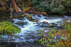 Flowing Mountain Stream (tclaud2002) Tags: stream mountain mountainstream flow water flowing rural landscape nature mothernature northcarolina andrews usa