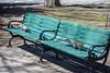 City Squirrels (dkphotonj) Tags: jerseycity vanvorstpark