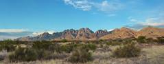 Organ Mountains Panorama (BongoInc) Tags: newmexico chihuahuandesert