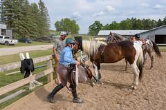 JBC_5615.jpg (Jim Babbage) Tags: krahc horseshow appaloosa horses 2018 bethany