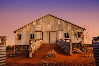 Currawinya Shearing Shed