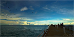 One afternoon in the blue. (Aglez the city guy ☺) Tags: afternoon seashore seascape sea beach walkingaround waterways miamifl blue outdoors sky clouds migratorybirds sunnyislesbeach people pier