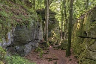 *Mullerthal Trail @ Felsenlabyrinth*