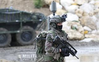 Eurosatory : démonstration dynamique armée de terre