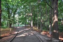 Київ, Ботанічний сад імені Фоміна Ukraine InterNetri 41