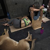Three (Julio López Saguar) Tags: segundo juliolópezsaguar gente people ciudad city urban urbano calle street madrid españa spain tres three perro dog