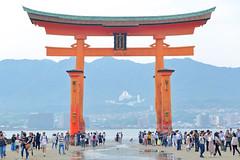 9L1A9465 (vicjuan) Tags: 20180527 日本 japan 広島県 廿日市市 宮島町 geotagged 厳島神社 itsukushimashrine hiroshima hatsukaichi itsukushima