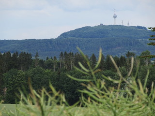 Blick auf den Köterberg (Weserbergland)