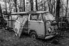 Keyless Entry (Wayne Stadler Photography) Tags: abandoned preserved junkyard georgia classic automotive derelict overgrown vehiclesrust rusty retro vintage oldcarcity rustographer rustography white