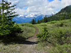 Powderface Ridge Hike 25 (benlarhome) Tags: alberta canada powderface powderfaceridge braggcreek hike hiking trek trekking rockies rockymountain mountain kananaskis