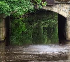 - (txmx 2) Tags: water reflection alster river hamburg