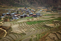 (* Cynthia Chang *) Tags: 不丹 bhutan asia people mask happiness travel nature countryside landscape
