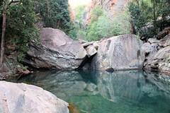 Emma Gorge Pool (destinationsjourney) Tags: australia kimberley westernaustralia outback emmagorge pool rockpool swimmingpool tree trees reflection swimminghole