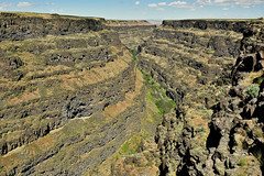 Bruneau Canyon, Idaho (BlakeLewisPhotography) Tags: animals animal wildlife bird lizard horse pronghorn people person guy life boat groundhog outdoors nature canyon aircraft maintenance water waterfall niagarafalls idaho new york las vegas casino nikon flowers california nevada sequoia national park nationalpark trees winter snow cool awesome f16 fly airshow mountain son baby announcement redrock river tennessee drone wife maternity pics creek