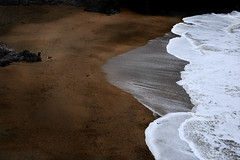 Woman and dog (PentlandPirate of the North) Tags: anglesey island beach waves foam sand dog woman northwales ~flickrinnes flickrinnes